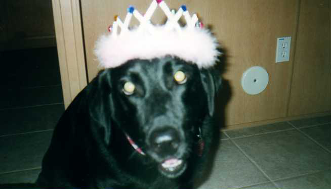 Piper wearing crown