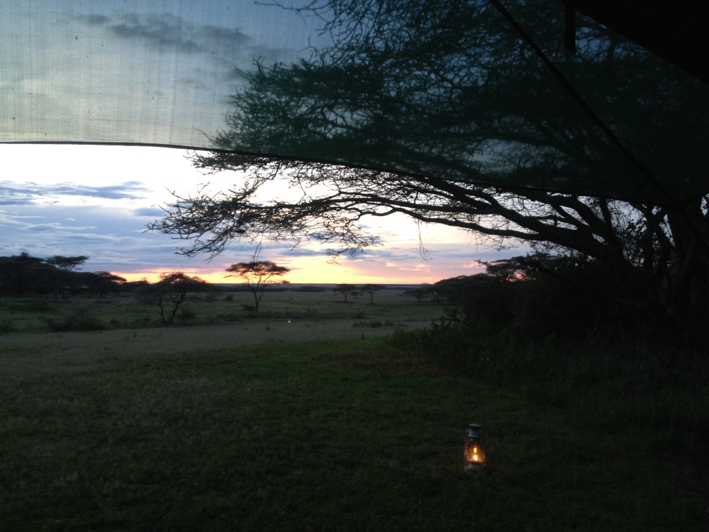 Alex Walker Serian Serengeti Tanzania