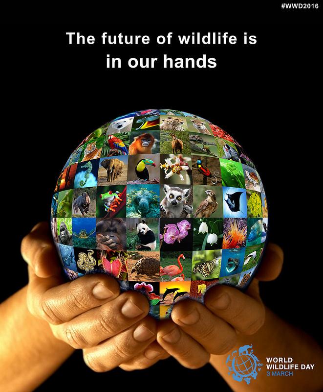 World Wildlife Day 2016