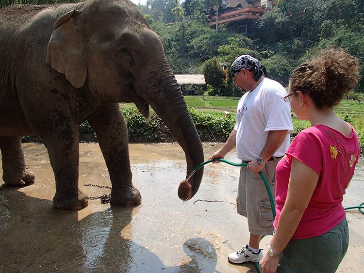 Lori and Michael giving elephant water at Anantara